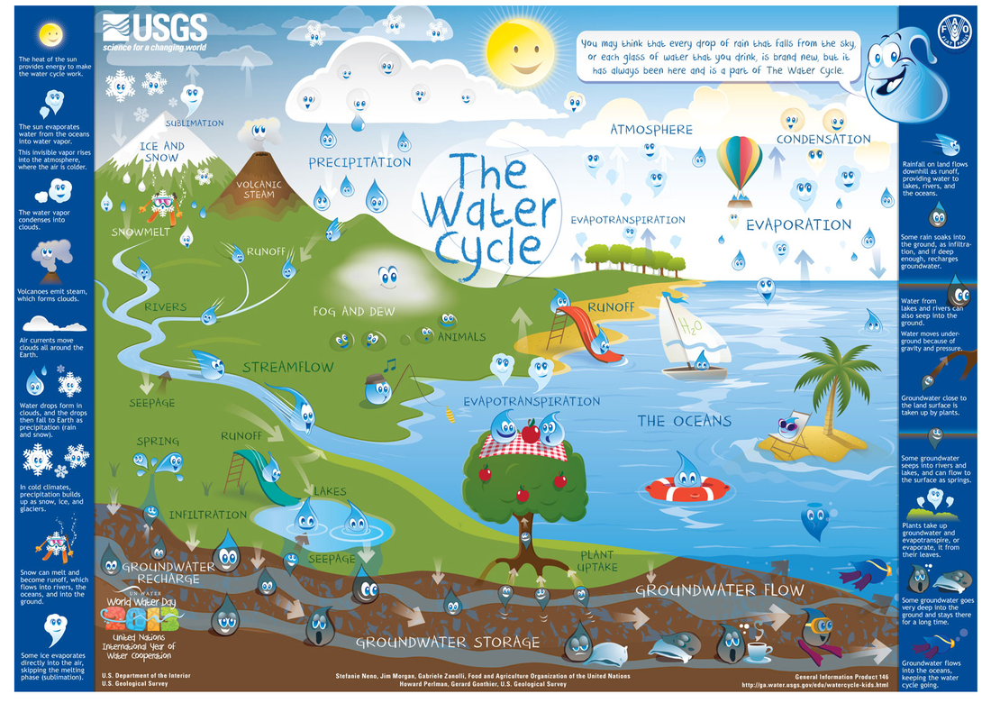 6th Grade The Water Cycle