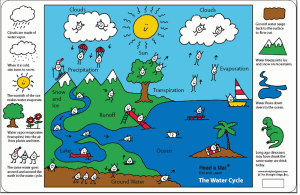 6th Grade The Water Cycle!  Ms Sylvester's Science Page