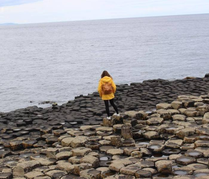 Giant's Causeway Tour From Dublin- A Paddywagon Review