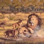 O cão capaz de matar um leão