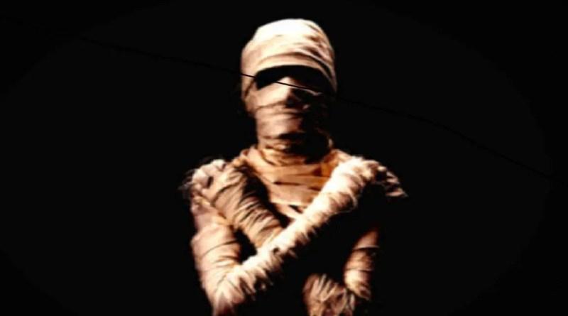 Cientistas abrem uma múmia em israel e descobrem que ela não é humana