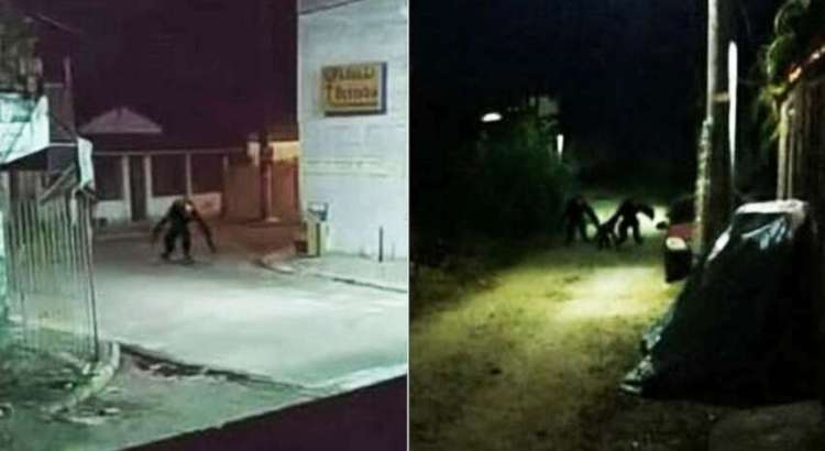 Imagens mostram criaturas aterrorizantes vagando pelas ruas à noite no Brasil