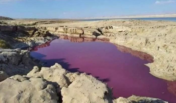 Água Do Lago Misteriosamente Ficou Vermelha Perto Do Mar Morto, Na Jordânia