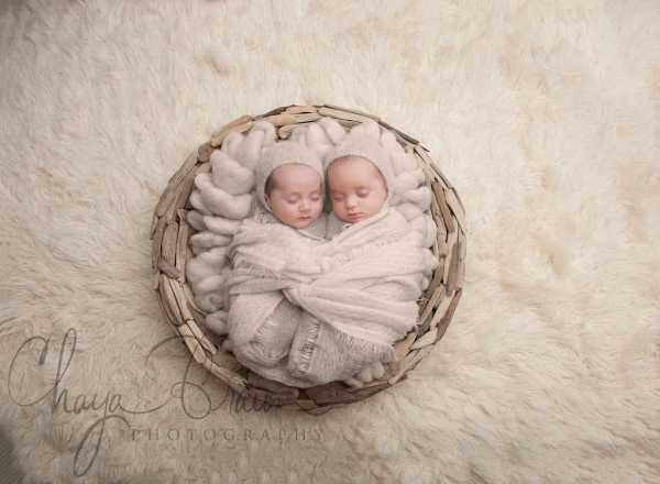twin babies photos