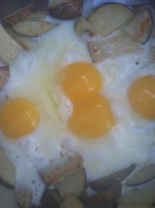 eggsjustfinished