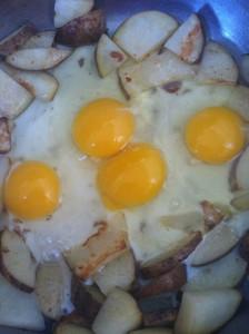 eggsjustpoured