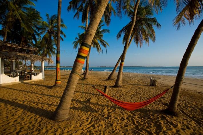 Hammock tied between coconut trees at Arugam Bay beach.
