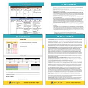 Mini Audit Bundle - Audit Solution + Definitions