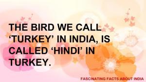 fascinating fact 12