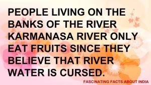fascinating fact 13
