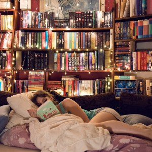 Library style bedroom