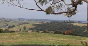 Clover Hill Drough IMG_1476