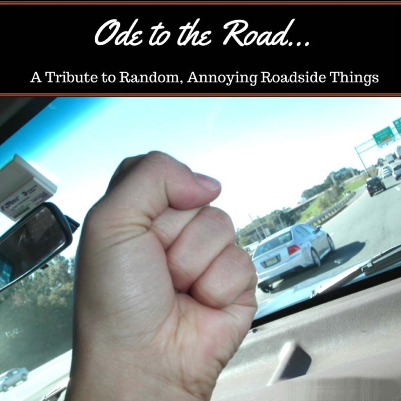 """From flying rocks, to sneaky cops, I present """"Ode to the Road"""" - A tribute to annoying roadside things.*"""