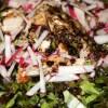 Warm Spiced Chicken Salad Recipe