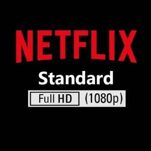 Netflix Standard Plan Account