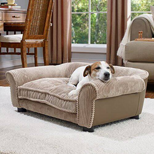 Best Sofa Material For Pet Owners Www Gradschoolfairs Com