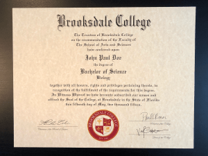 Fake Bachelor Degree