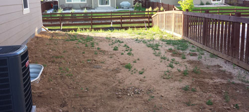 landscaping-as-it-looked-when-we-moved-to-the-house