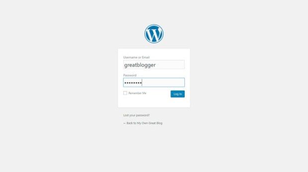 WordPress admin log in page