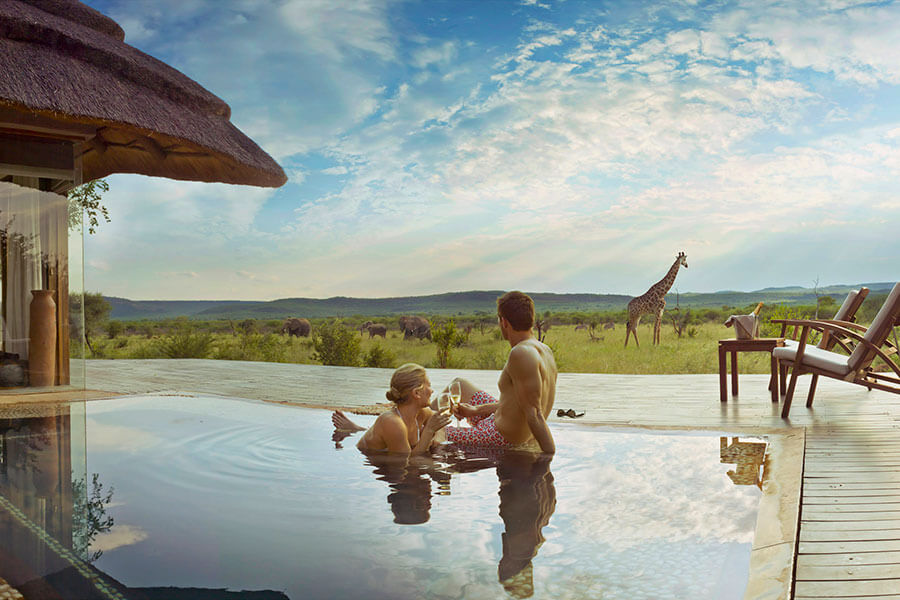 Luxury Safari Experience For Newlyweds In South Africa