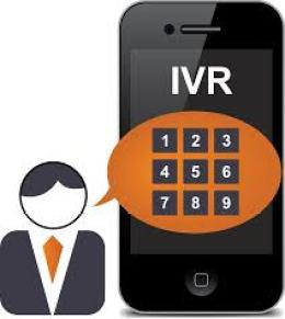 Interactive Voice Response Systems