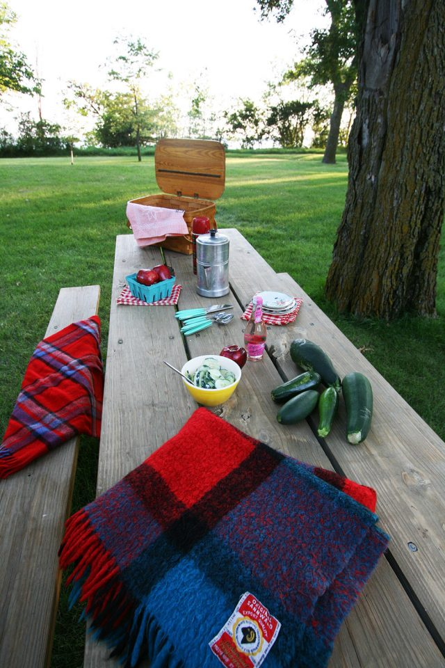 What to bring to your summer picnic? Here are some great cheap recipes to consider!