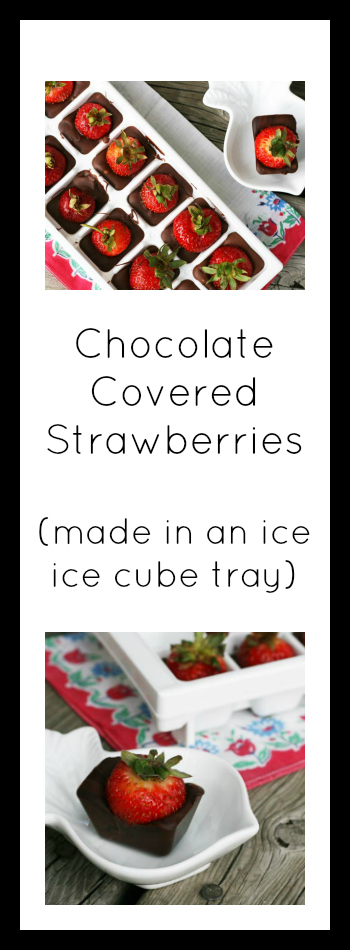 Chocolate-covered strawberries (made in an ice cube tray). Click through for instructions!