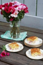 Rhubarb custard cake recipe from Cheap Recipe Blog