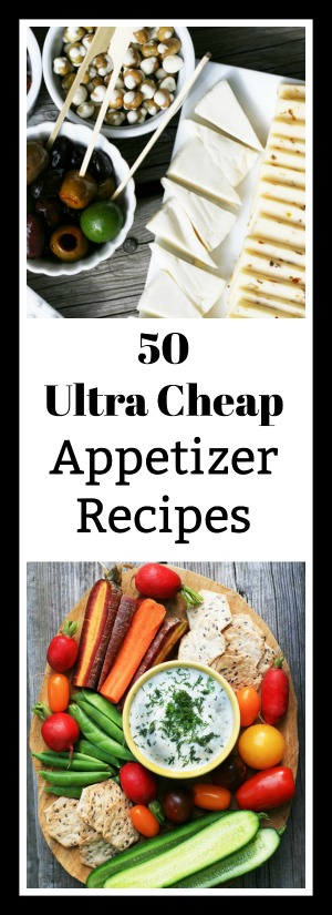 50 Ultra Cheap Appetizer Recipes (less than $1 per serving!)