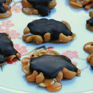 Homemade cashew turtles recipe, from Cheap Recipe Blog