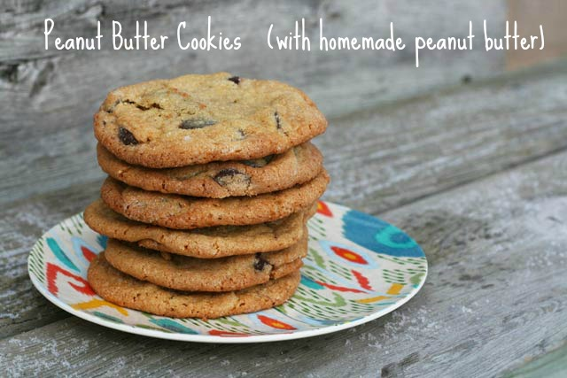 Peanut butter cookies (with homemade peanut butter!) recipe, from Cheap Recipe Blog