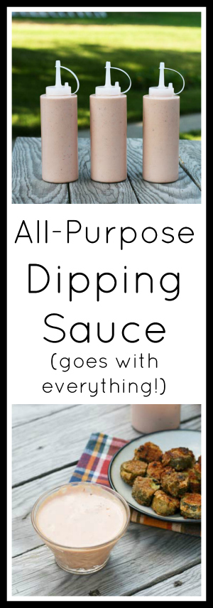 The best all-purpose dipping sauce - goes great on pretty much anything! Click through for simple recipe.