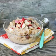 Slow cooker apple oatmeal, feed 4 people for less than $10 a day!