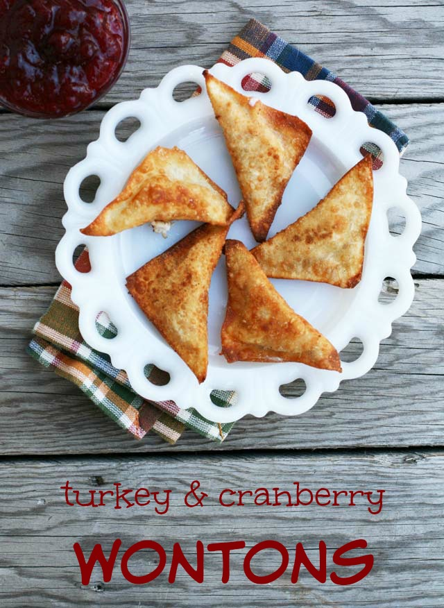 Use leftover turkey & cranberries to make these delicious wontons. Repin to save!