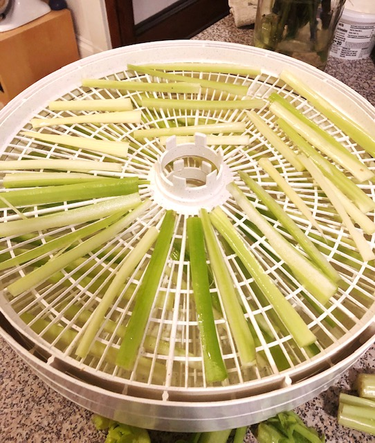 How to dehydrate celery to make celery powder and celery salt.