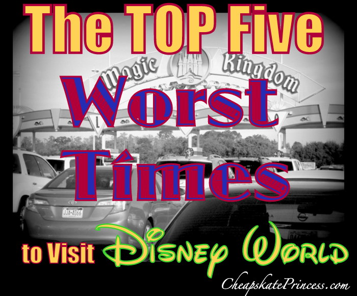 When you should not visit Disney World