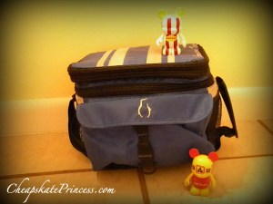 Best cooler to take to Disney World, best snacks to take to Disney World, save money by bringing your own snack to Disney World