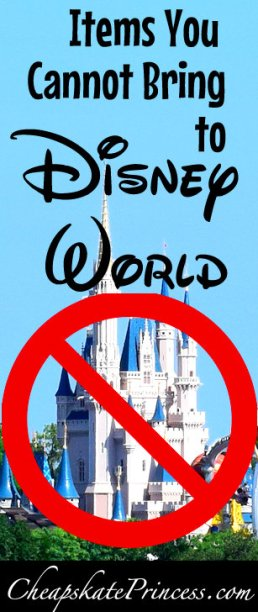 items you can't take to Disney World