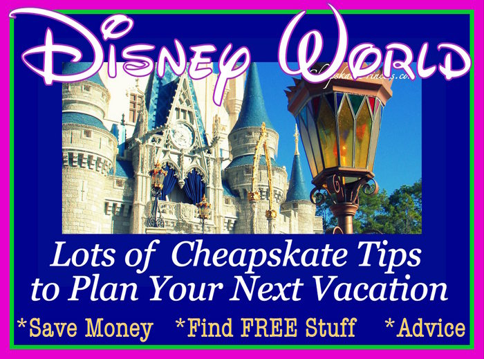 Disney World vacation tips for beginners to pros
