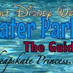 Disney World Water Parks: A Cheapskate Princess Guide