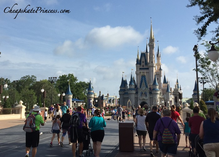 how-much-walking-will-i-do-at-disney-world