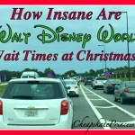 Christmas Eve and Day At Disney World: How Crazy are the Wait Times?!