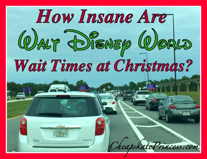 wait-times-at-disney-world-during-christmas
