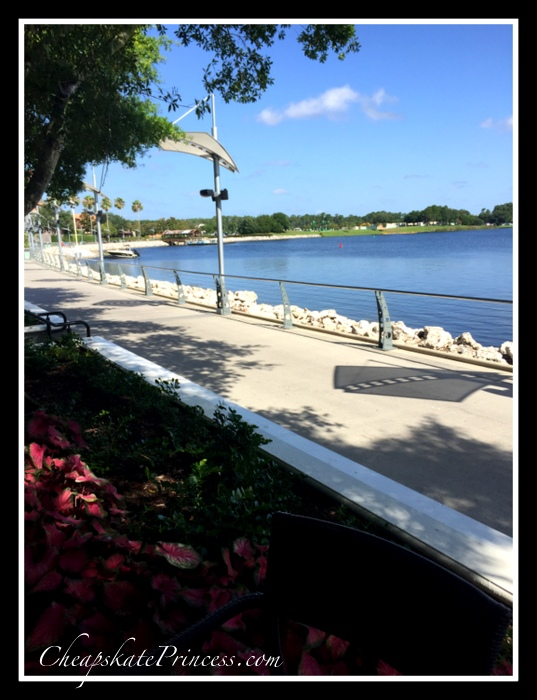 lake-by-starbucks-at-disney-springs