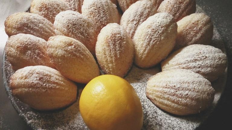 tangy lemon madeleines