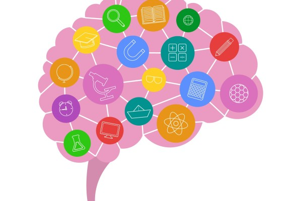Brain Stimulating Activities That Increase Neural Connections