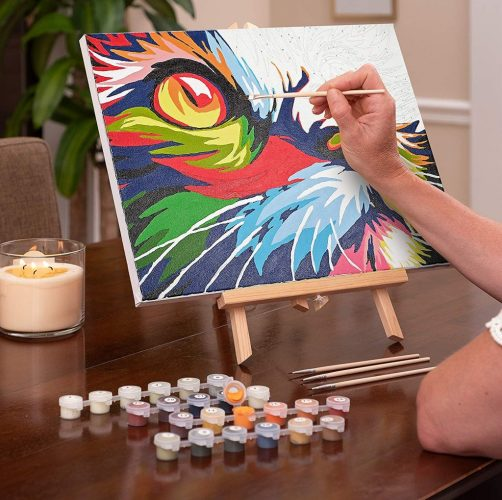 Paint by numbers - christmas gifts for women