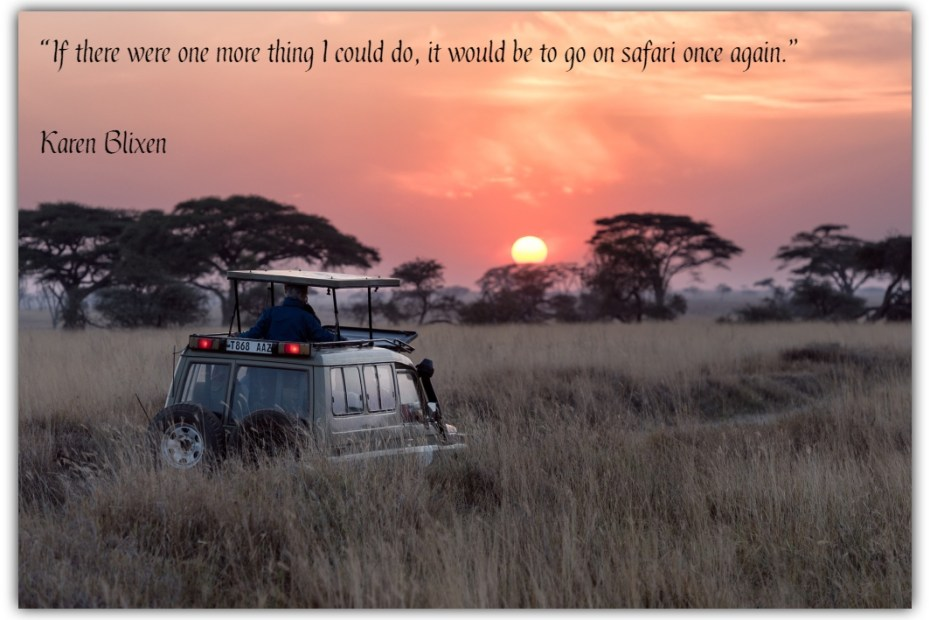 What drives you while planning for safaris?