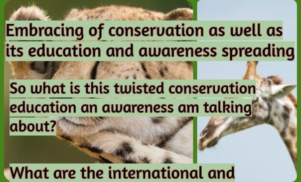 Twisted Conservation Education and Awareness