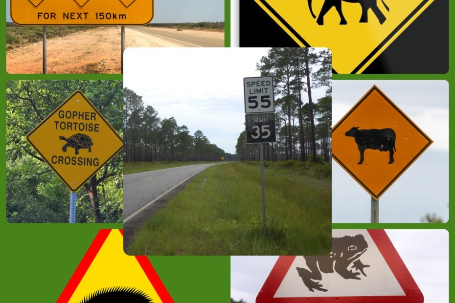 Importance of having wildlife road signs in highways cutting through conservation areas